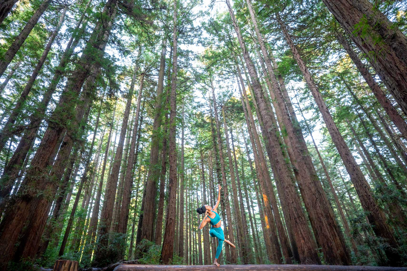 African american woman athlete running in the redwoods by advertising photographer robert houser based in San Francisco